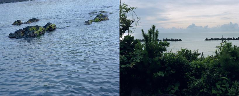 八丈島の風景