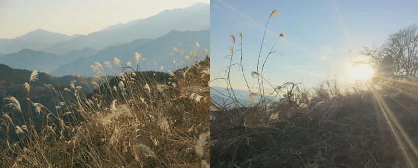山を登る高野勝洋